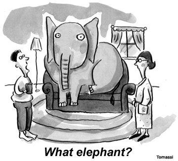 elephantinthelivingroom2
