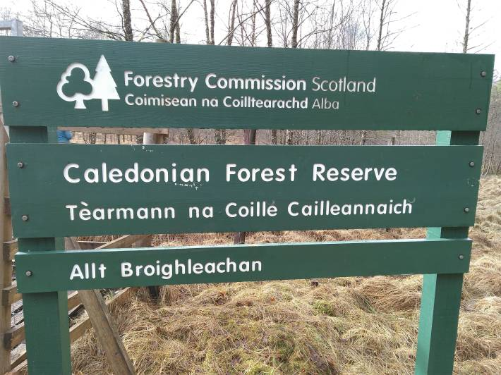 glen orchy cfr